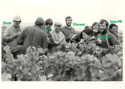 Vendange1982